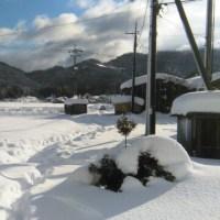 33年ぶりの大雪