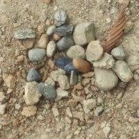 2476号Камень(石)