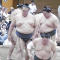 大相撲春場所総括