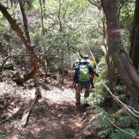 ㉔ 東中倉山~八世以山縦走登山 : ロープ頼りに急坂を下る