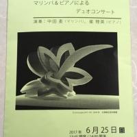 大谷美術館とコンサート