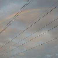 虹見たよ!