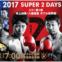 Box Boxing Fes 2017。