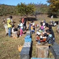 農園便り(収穫祭)