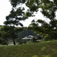 清澄庭園  平28初秋