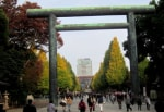 東京黄葉巡り~靖国神社・神宮外苑