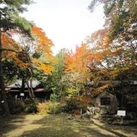 10/22(土)のイキメンニュース~追分&軽井沢周辺の情報