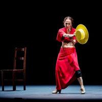 Flamenco アーティスト