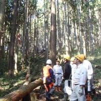 高性能林業機械講習・・・