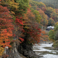紅葉の諏訪峡(上越C61)