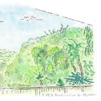 「断崖絶壁のジャングルと空を舞うトンビ君」 その3