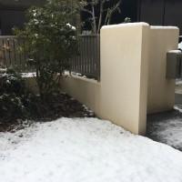 岐阜市内初積雪かな