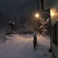 雪かきして帰ります(((^^;)涙