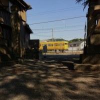 HAPPY YELLOW TRAIN CLASSIC