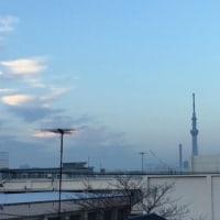 12月の穏やかな一日になそうです。(^o^)(^o^)