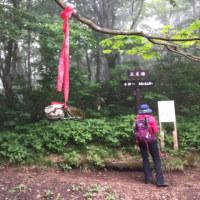 泉ヶ岳2017 vol.7