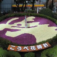 神戸市役所花時計