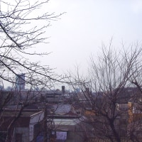 【初の「歴史歩き」回顧】もう17年近く前のことです・・・【東京都世田谷区探訪】