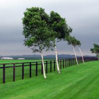 2007北海道紀行・牧場