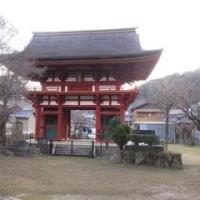 瀧山寺仁王門とミイと抹茶と寿会役員会
