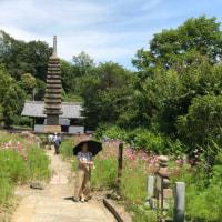 史料学概論試験と奈良散歩