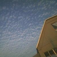 うろこ雲 (地震雲)