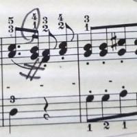 【ワンポイント】5本指とピアノの矛盾って?