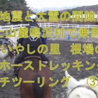 地震と大雪の間隙に 富士山麓鳴沢村で乗馬体験 西湖いやしの里  根場の蕎麦 ホーストレッキング&プチツーリング  ③  ^^!  ブログ&動画