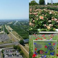 木曽三川公園138タワーパーク