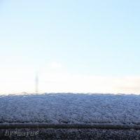 雪の降った朝*