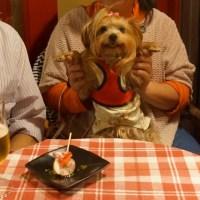 ちゃこ、ディナーを食べに行く ♪\(*´▽`)o゚★,。・:*:・☆゚