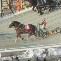 北海道十勝の旅 ばんえい競馬