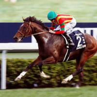 2016年度JRA賞発表。年度代表馬にはキタサンブラックが選ばれる。