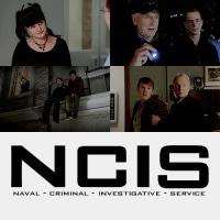 NCIS ネイビー犯罪捜査班 14 #13 いばらの道