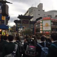 鎌倉横浜自主研修終了