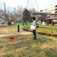 横浜北仲マルシェ3月。春うらら。