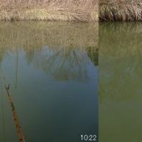 釣行記2017年2月16日 春の陽気に