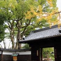 名古屋 徳川園 3