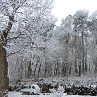 再び雪景色