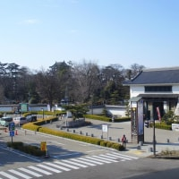 東海道 岡崎宿巡り 二十七曲りの碑から二七市へ④