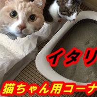 イタリアIMAC 『猫用コーナートイレ』