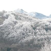 聖高原の霧氷の旅「①