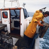 ロブスター漁に関する提案  英国