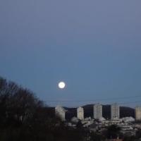 大きくて丸い月