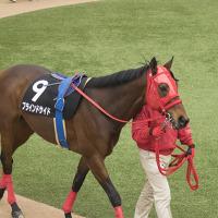 松岡 正海騎手