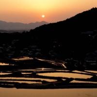 細川の棚田(夕景)