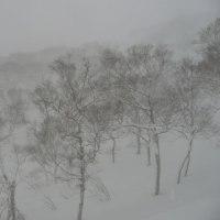 スキー 2017/02/02