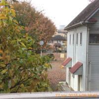 我が家から見える紅葉