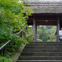 北鎌倉散歩 東慶寺