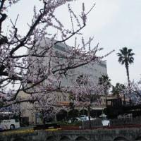 3月の俳句(その5)